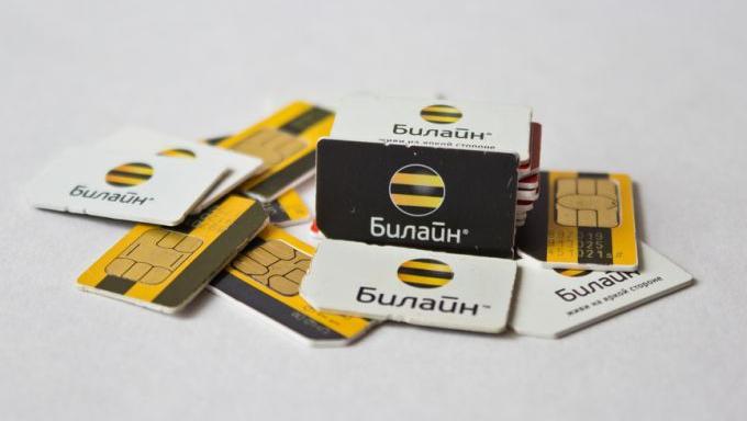 Где восстановить SIM-карту билайна