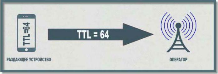 ttl windows